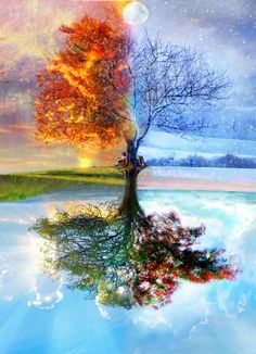 Beautiful depictions of the four seasons.