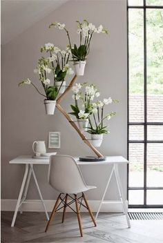 In the past Dutch designer François Hannes designed the Orchid Twister, but was never put into production. The Orchid Twister is unique. Dutch design and made in Holland. Indoor Orchids, Orchids Garden, Orchid Plants, Indoor Plants, Orchid Vase, Phalaenopsis Orchid, Interior Plants, Decor Interior Design, Fenetre Double Vitrage