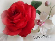 rosa e orchidea