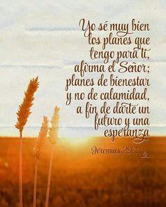 YO SE MUY BIEN LOS PLANES QUE TENGO PARA TI AFIRMA EL SEÑOR; PLANES DE BIENESTAR Y NO DE CALAMIDAD, A FIN DE DARTE UN FUTURO Y UNA ESPERANZA JEREMIAS 29:11