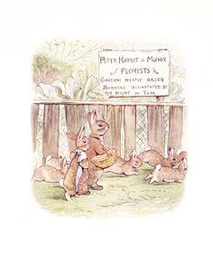 beatrix potter illustrations | Beatrix Potter, finished illustration for The Tale of the Flopsy ...