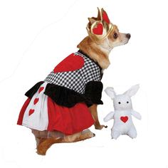 Casual Canine Queen of Hearts Dog Costume at Baxterboo