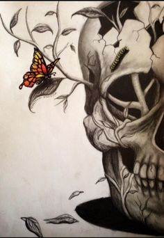 Immagine di skull, butterfly, and drawing