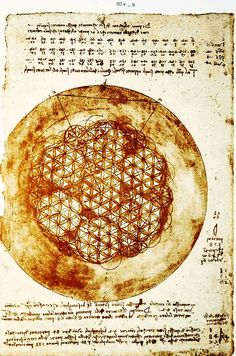 Leonardo Da Vinci - 'flower of life'
