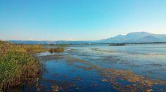 Albania laguna park Kune ne Lezhe....