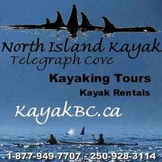 Telegraph Cove, Lodging, Vacations, Accommodations, Whales, Kayaking, Grizzly Bears | Vancouver Island North, Vancouver Island, BC, Canada