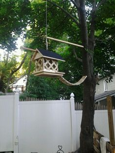Squirrel feeder. Our furry friends love it!!