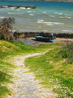 Road to Johnny's Shore, Isle of Gigha