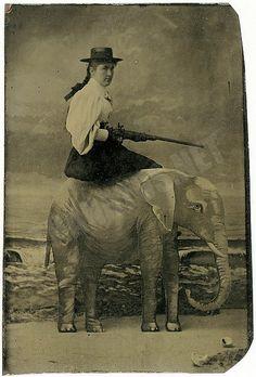 Very unusual elephant photo prop. Tintype, 1890.
