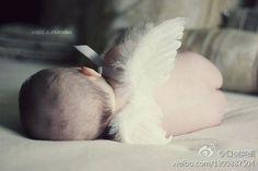 每个 宝宝 都是掉落凡间的天使 可能 你看不到他背后的小