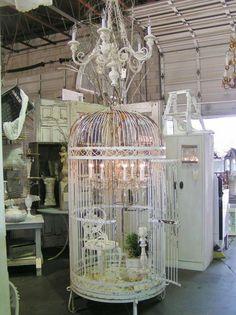 Blossoms Vintage Chic: Vintage Love at Urban Barn Birdcage Chandelier, Candle Chandelier, Vintage Chandelier, Birdcage Decor, Birdcage Planter, Chandeliers, Antique Bird Cages, Large Bird Cages, Urban Barn