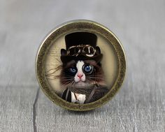 Steampunk Cat - Handmade Antique Bronze Dresser Knobs Cabinet Pull handles on Etsy, $6.20
