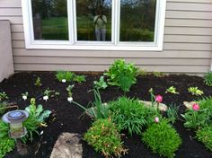 Victory Garden on the Golf Course: What to plant for your first garden.  If this your first vegetable and herb kitchen garden, here is a basic garden to plant.