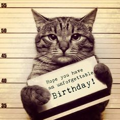 Funny birthday meme with a cat in a police #birthdaymeme