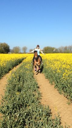From Charlotte | The Jacksons BIG Equestrian Picture Competition #horse #riding #countryside #fields #equestrian
