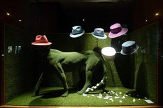 Vitrines Hermes - Paris, février 2012 www.instorevoyage.com   #in-store marketing #visual merchandising