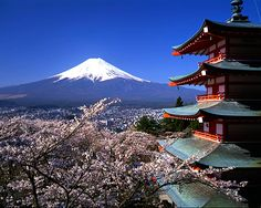 Mt. Fuji, cherry blossoms, and temple, Japan