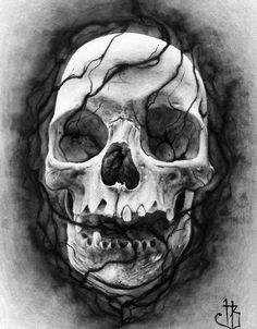Skull(2) Inverted by herrerabrandon60 on DeviantArt