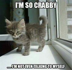 I'm so crabby