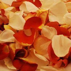 Leonidas Creamsicle Bulk Rose Petals 6000 for $160