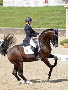 Dressage horse riding - canter pirouette
