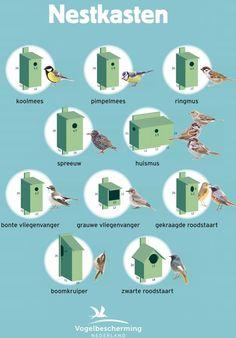 Best Indoor Garden Ideas for 2020 - Modern Homemade Bird Houses, Bird Houses Diy, Indoor Garden, Garden Art, Home And Garden, Eco Buildings, Bug Hotel, Bird House Plans, Birdhouse Designs