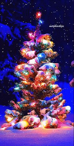 animated christmas tree gif in snow Christmas Tree Gif, Christmas Scenery, Beautiful Christmas Trees, Christmas Love, Christmas Images, Christmas Wishes, Winter Christmas, Vintage Christmas, Christmas Decorations
