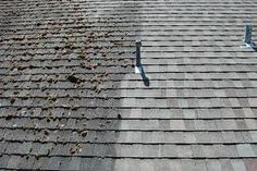 Roof cleaning by Mears Roofing!