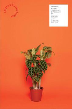 Brooklyn Botanic Garden Identity (Student Project) - Ben Grandgenett Design