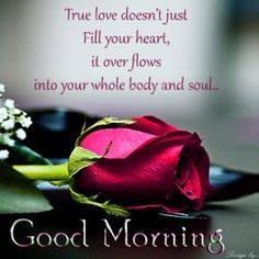 Good Morning Pictures With Love Quotes