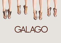 Galago