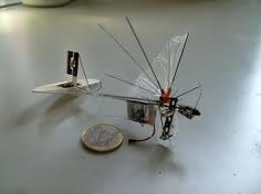 Micro-Air Vehicles Spreading Their Wings