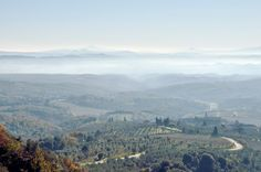 Campi (Castelnuovo Berardenga): Panorama. Foto di Sergio Visone
