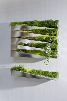 Fancy pants expensive wall planter. Would love to find a more affordable solution!