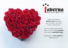 Valentines day in Taverna restaurant, Tg. Secuiesc