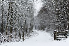 I would walk here with you...as long as I had plenty of warm clothes on!