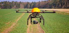 Drones ajudam em projetos ambientais de preservação à natureza!