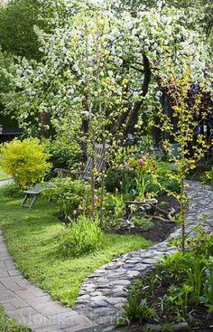 beautiful backyard garden design ideas can for your garden planning 2 - New ideas Back Gardens, Small Gardens, Outdoor Gardens, Outdoor Rooms, Unique Garden, Natural Garden, The Secret Garden, Garden Cottage, Garden Living