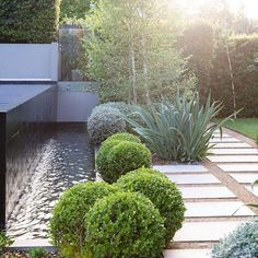 Pools should relate to the whole garden rather than look flash all on their own.