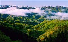 Japón Honshu Ishikawa, mañana de primavera, paisaje hermoso, niebla, montañas Fondos Fotos Imágenes