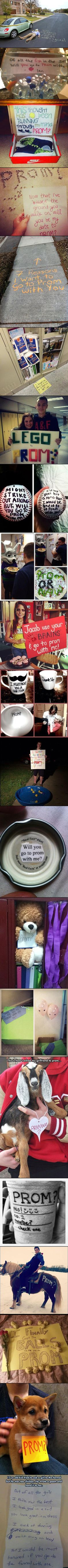 Great ideas for asking prom dates. I love the guy with the rose on the pony-that ones the best!