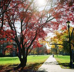 Vassar in the fall. Hilary Smith will visit on October 31st at 4:00 in the College Center room 204. Email hsmith@christies.edu for details or to RSVP.