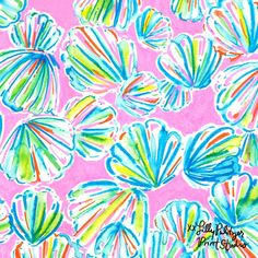A reason to shellebrate. #Lilly5x5
