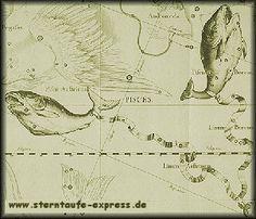 http://www.sterntaufe-express.de/Alle-Sternbilder/Stern-kaufen-sterntaufe-im-Sternzeichen-Fische
