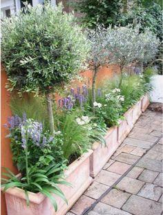 Zulke borders in de voortuin, maar dan breder. Met mini appel tree's en lavendel en voor het voorjaar gemixte bollen erin.