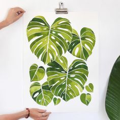 Some plant inspiration from the talented plant artist Jenny of @livingpattern to brighten up your day #plantinspiration  #splitleaf #philodendron #makersgonnamake
