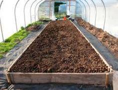 Imagini pentru growing in winter in raised beds in greenhouse