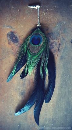 Peacock Feather as an hair accessory. For more follow www.pinterest.com/ninayay and stay positively #pinspired #pinspire @ninayay