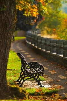 Outdoor Bench Ideas You'll Love It for Garden Decoration Scenery Photography, Autumn Photography, Beautiful Nature Wallpaper, Beautiful Landscapes, Photos Voyages, Image Hd, Nature Scenes, Amazing Nature, Beautiful Places