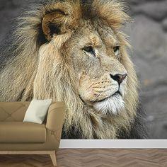 Fotobehang Koning van de jungle| Maak het jezelf eenvoudig en bestel fotobehang voorzien van een lijmlaag bij YouPri om zo gemakkelijk jouw woonruimte een nieuwe stijl te geven. Voor het behangen heb je alleen water nodig! #behang #fotobehang #print #opdruk #afbeelding #diy #behangen #leeuw #mannetje #leeuwen #afrika #afrikaans #dieren #dier Lion, House Design, Prints, Animals, Leo, Animales, Animaux, Lions, Printed